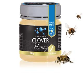 DBHBCL Clover Honey